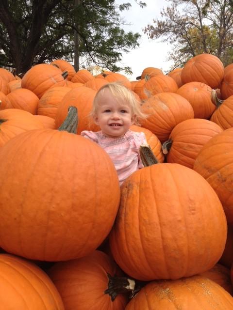 penny pumpkin