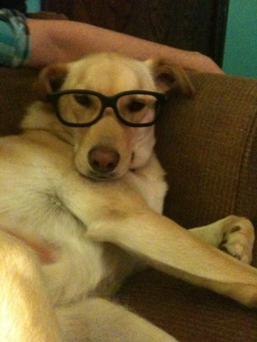della glasses