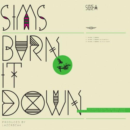 sims_burnitdown_cover600