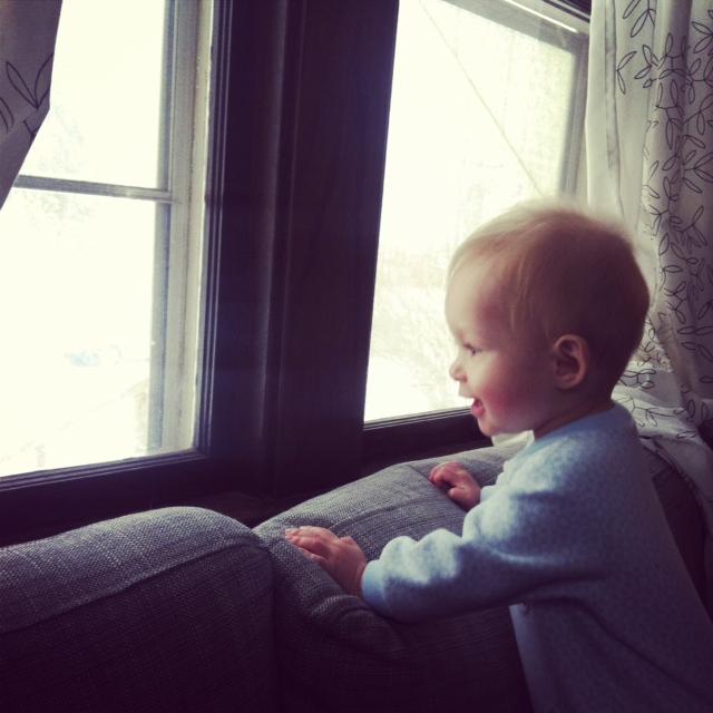 penny snow window