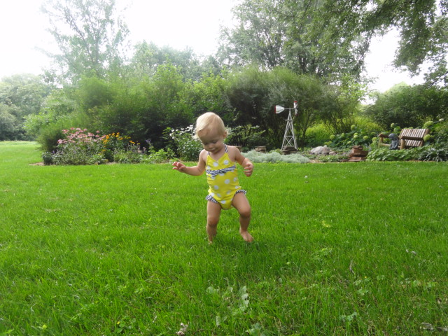 penny grass